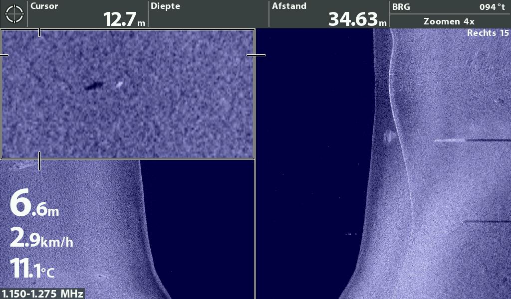 enkele vis op Side Imaging