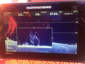 Humminbird Mega SI